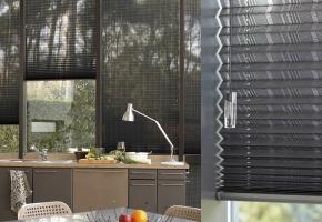 Plisseeritud žalusiid standardsetele akendele, juhitavad nööriga - 14 tüüp