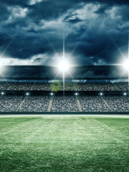 прогнозы на футбол сегодня от профессионалов бесплатно на сегодня ks