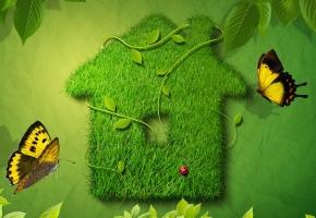 Ekologijos gerbėjų lange - gamtos atspindys!
